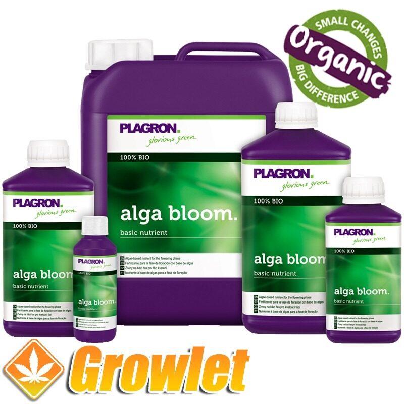 alga-bloom-plagron-abono-floracion-organico