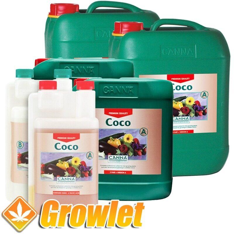 coco-a-b-canna-abono-cultivo-coco