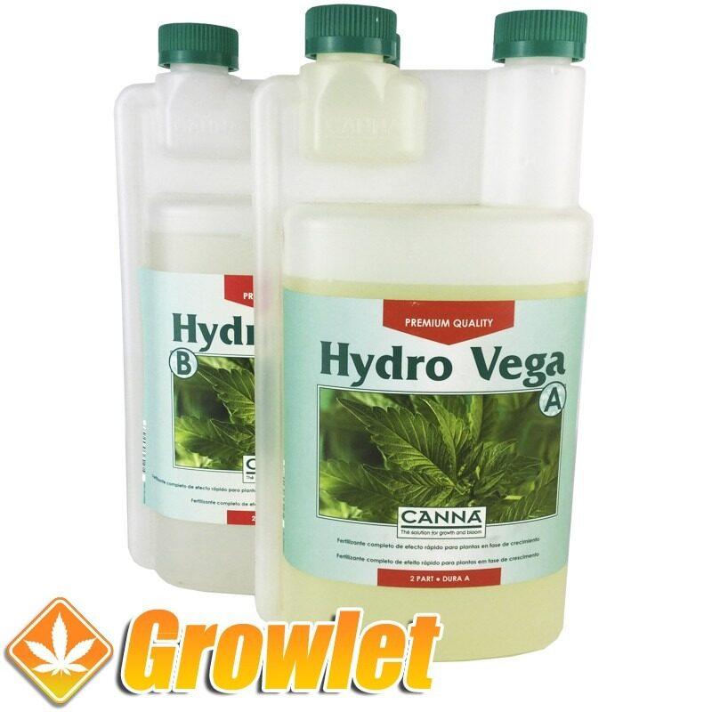 hydro-vega-canna-abono-crecimiento-cultivo-hidroponico