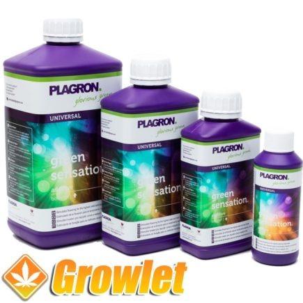 plagron-green-sensation-potenciador-floracion-cultivo