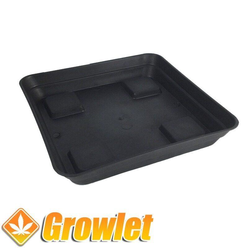 Plato cuadrado recoge agua de maceta de cultivo