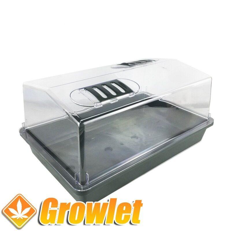 propagador de plastico para hacer esquejes o germinar semillas