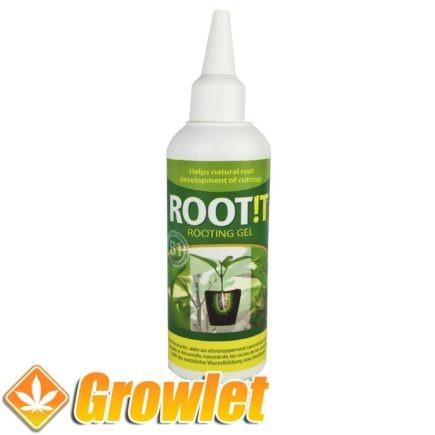 Hormonas para hacer esquejes Root It