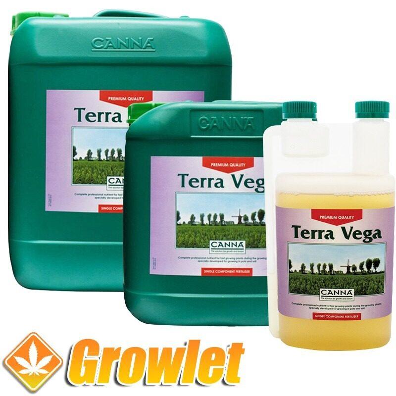 terra-vega-canna-abono-crecimiento-cultivo-tierra