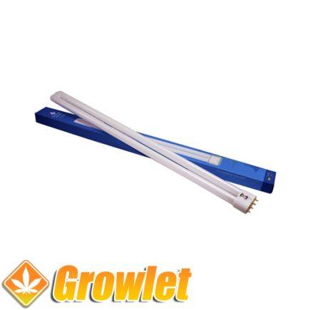 Vista superior del tubo fluorescente azul TCL 55 W
