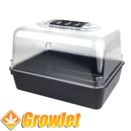 Invernadero o propagador para germinar o hacer esquejes
