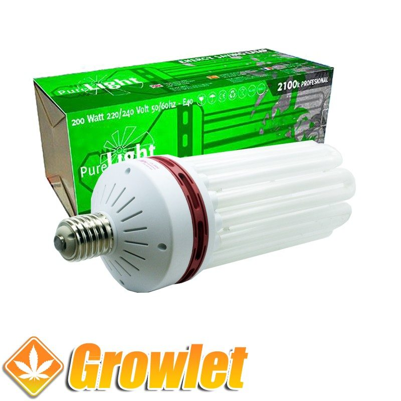 Vista frontal del CFL Pure Light 200 W