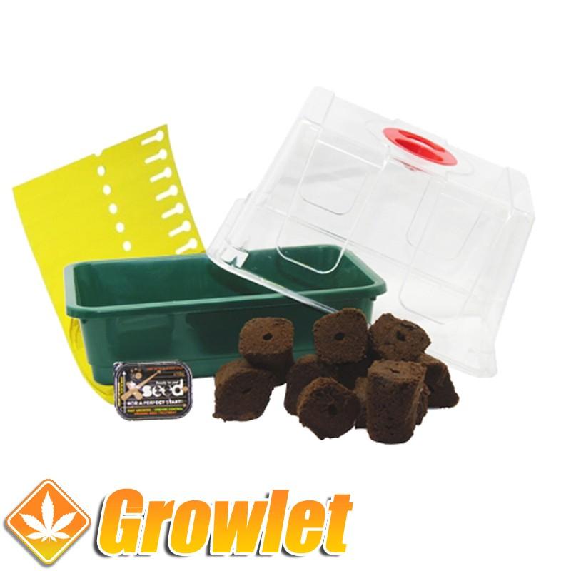 Kit para germinar semillas de cannabis con Root It