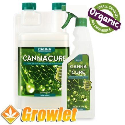 cannacure-insecticida-organico-protector-preventivo