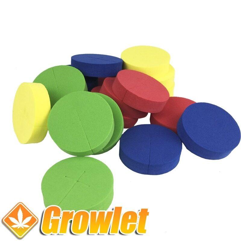 Discos de neopreno de color para esquejes
