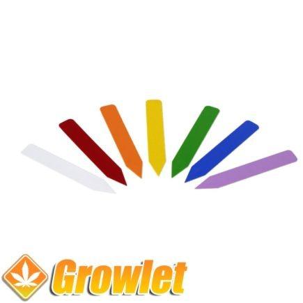 etiquetas-color-marcar-plantas-distintivas-0