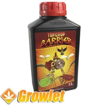barrier-top-crop-protector