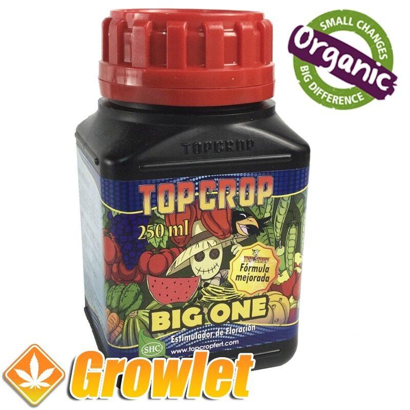 big-one-top-crop-estimulador-floracion