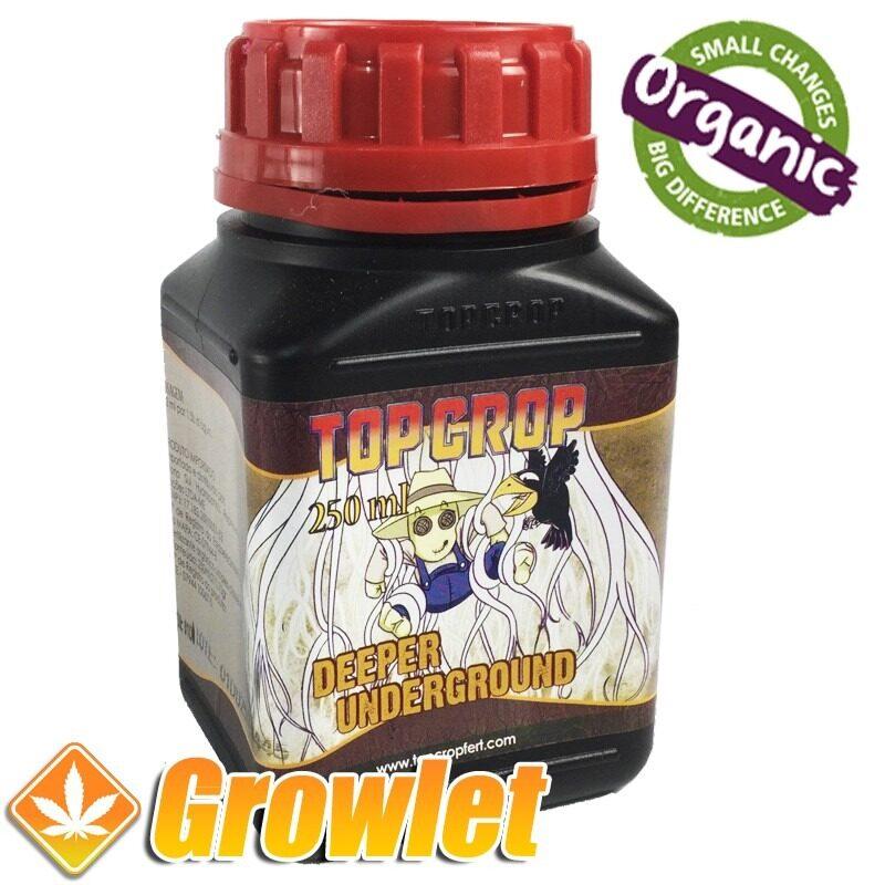 deeper-underground-top-crop-estimulador-raiz
