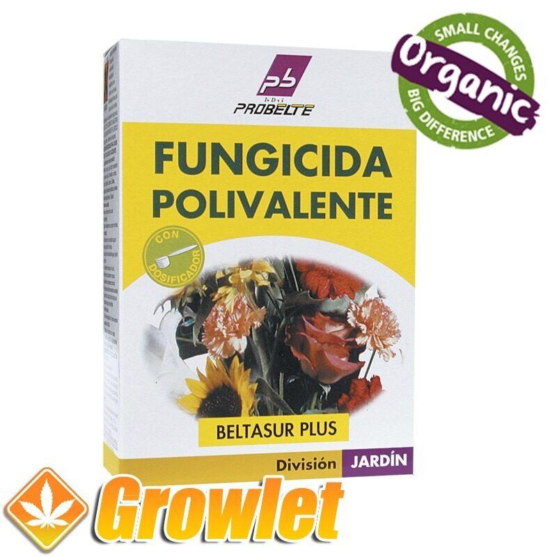 fungicida-beltasur-500-cobre