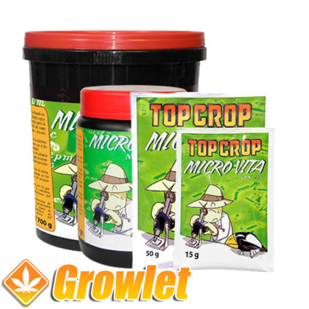 micro-vita-top-crop-bacterias-hongos-raiz