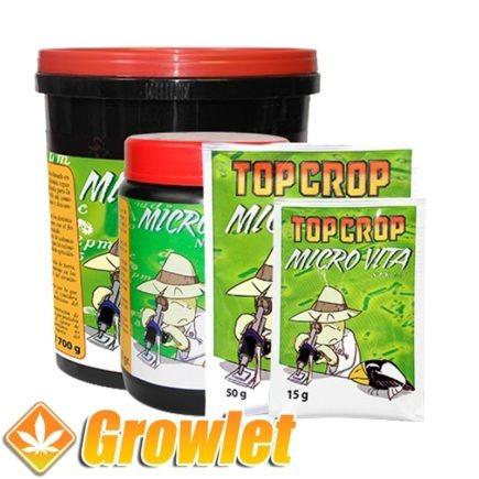 micro-vita-top-crop-bacterias-hongos-raiz