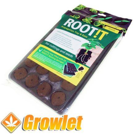 Bandeja Root It: Sustrato para esquejes o semillas