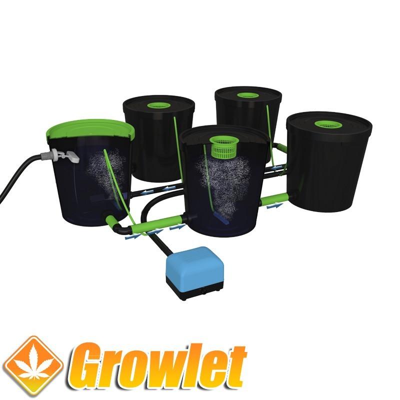 Alien RDWC 24-20 litros: Sistema de cultivo hidropónico