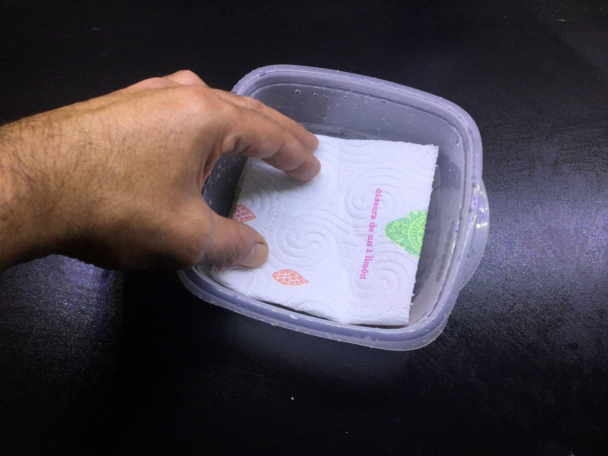 Germinar semillas de cannabis en papel de cocina