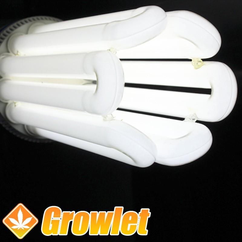 Agrolite 105 W fluorescente CFL para crecimiento