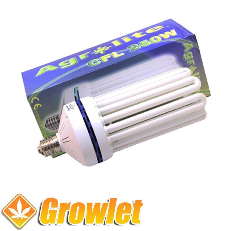 Vista frontal del CFL Agrolite 250 W