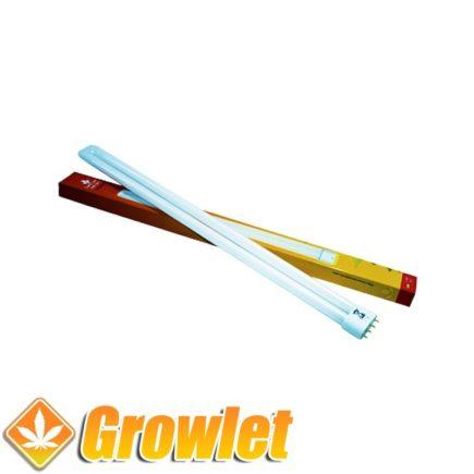 Vista superior del tubo fluorescente rojo TCL 55 W