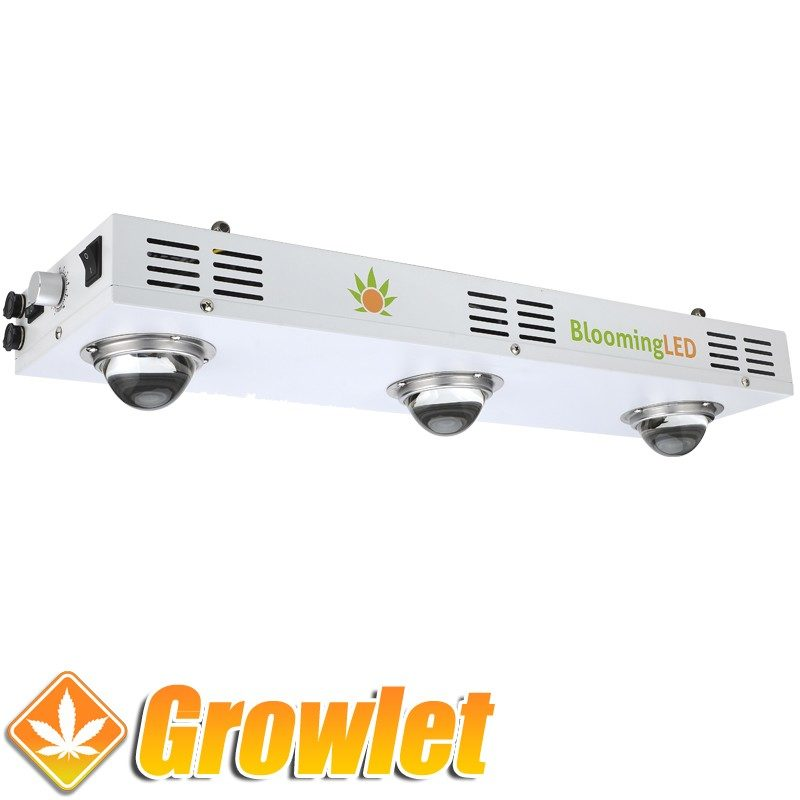 BloomingLED 160 W : LED de cultivo interior