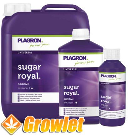 sugar-royal-plagron-potenciador-sabor-resina