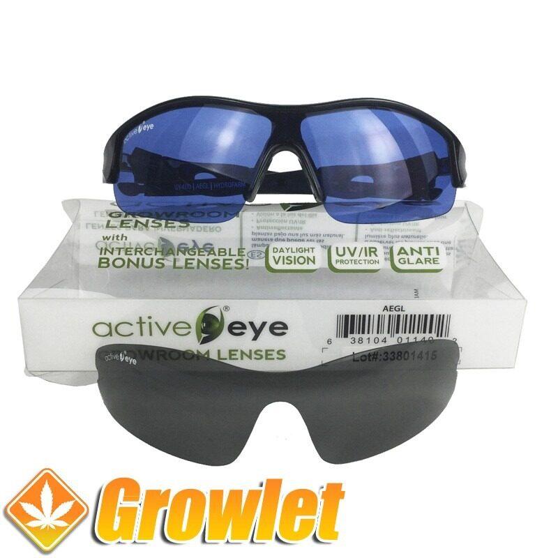 Vista frontal de las gafas de protección Active Eye