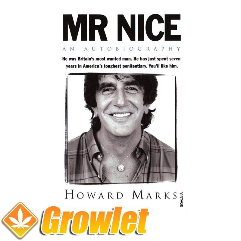 Vista frontal del libro Mr Nice