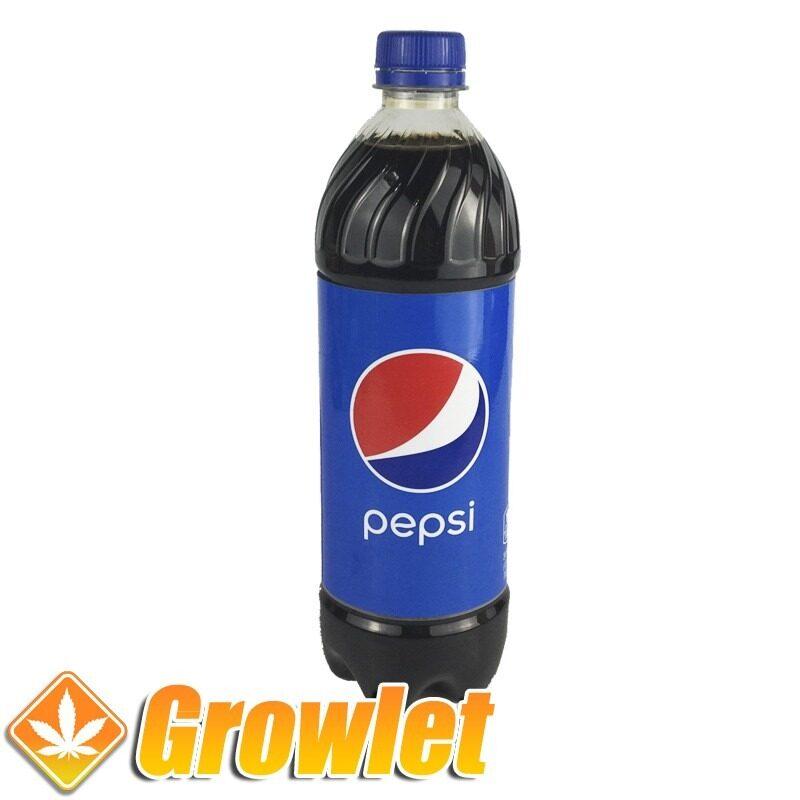 Botella de ocultación de Pepsi de plástico