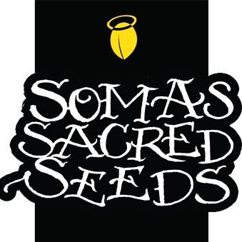 Soma Sacred Seeds