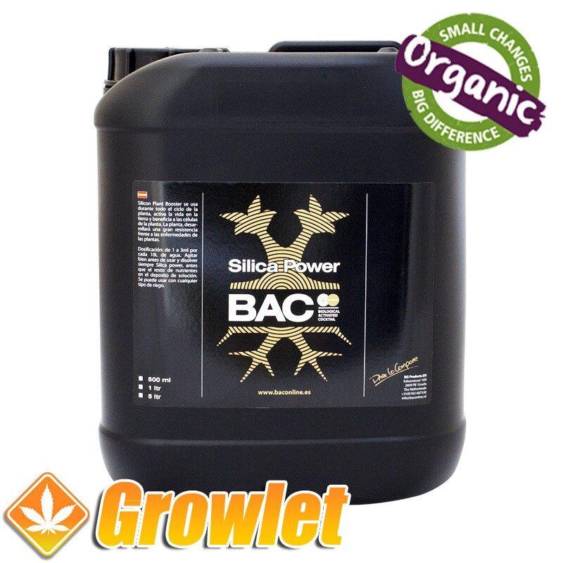 BAC Silica Power silicio soluble