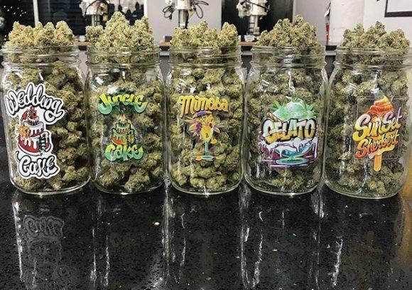 Variedades de marihuana cultivadas por Jungle Boys