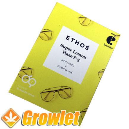 Super Lemon Haze cannabis seeds by Ethos
