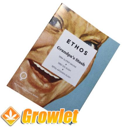 Semillas Grandpa´s Stash de Ethos Genetics