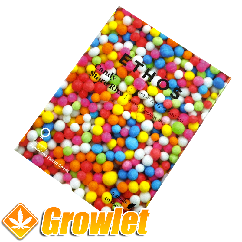 Candy Store R1 de Ethos Genetics