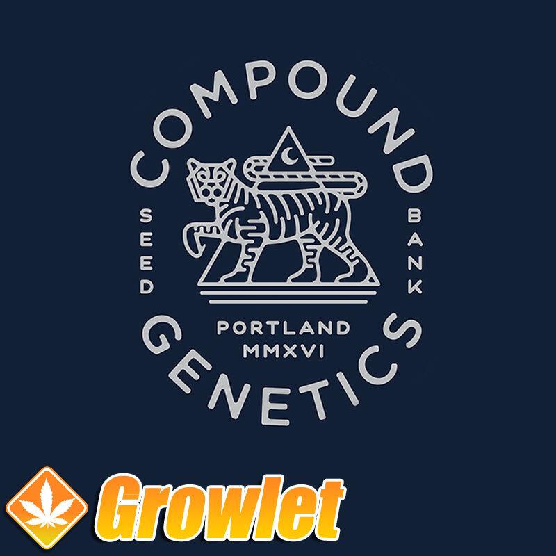 Enzo de Compound Genetics