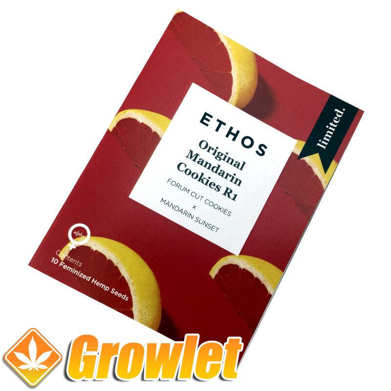 Original Mandarin Cookies de Ethos Genetics