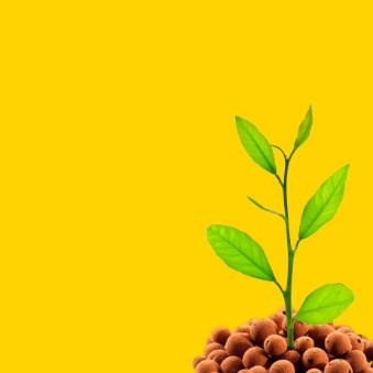 Abonos de crecimiento hidropónico