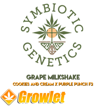 Grape Milkshake de Symbiotic Genetics