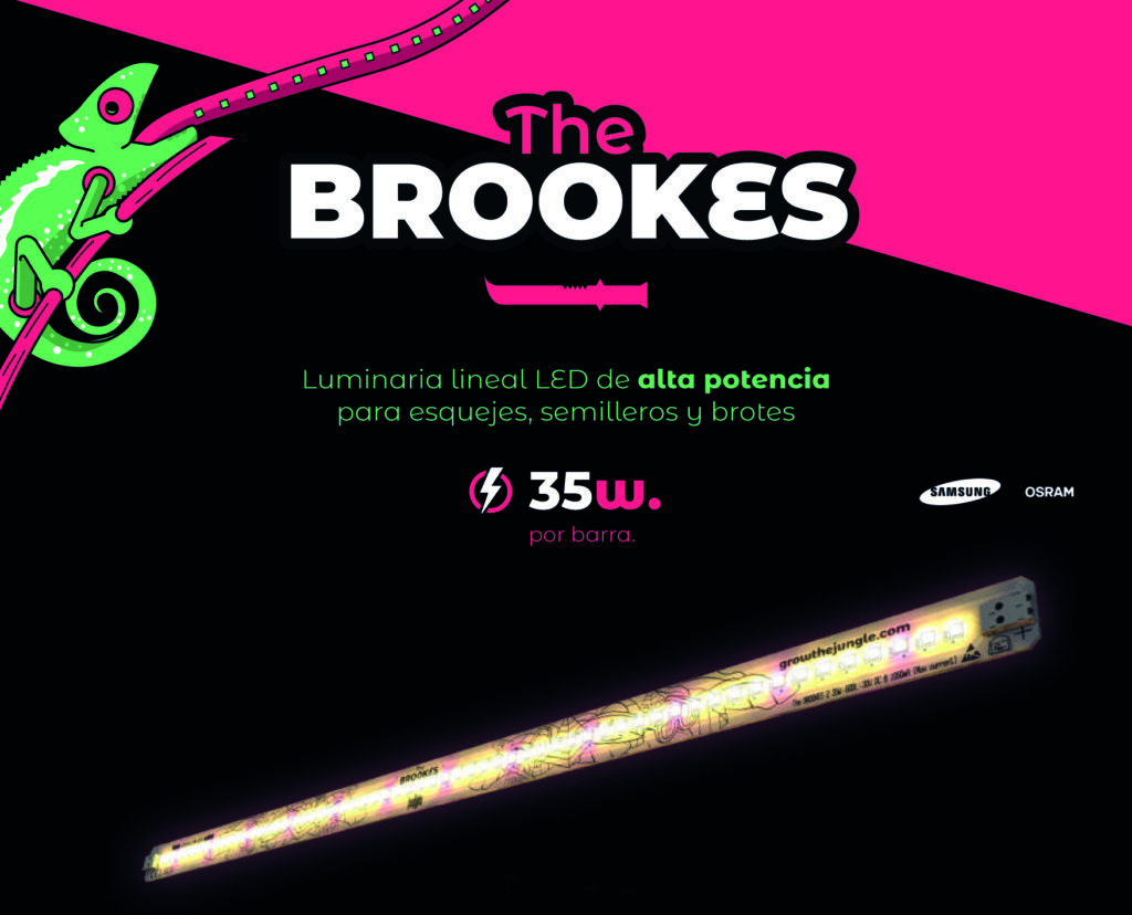 Foto de la barra LED The Brookers