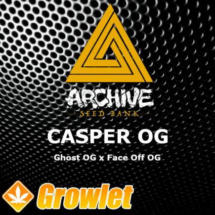 Casper OG semillas regulares de cannabis