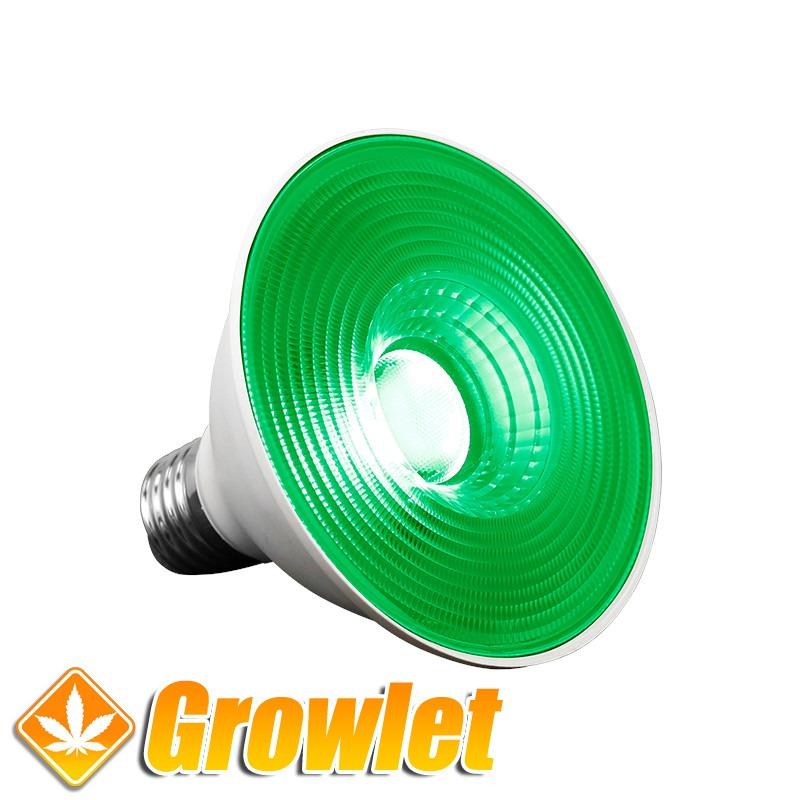 Agrolite Dark Night 20w LED Bombilla Verde