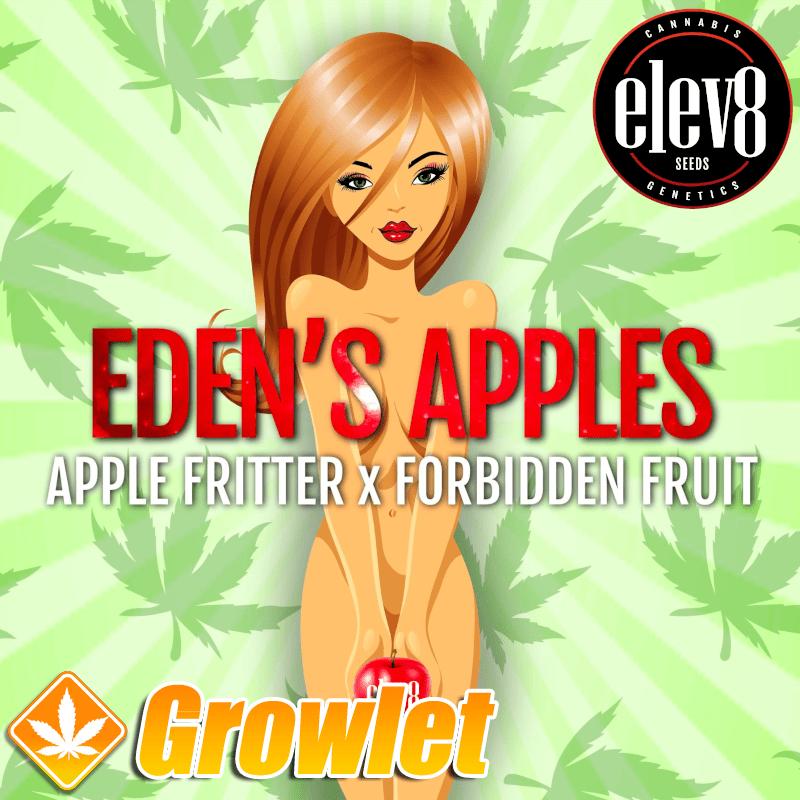 Eden´s Apple semillas feminizadas de cannabis