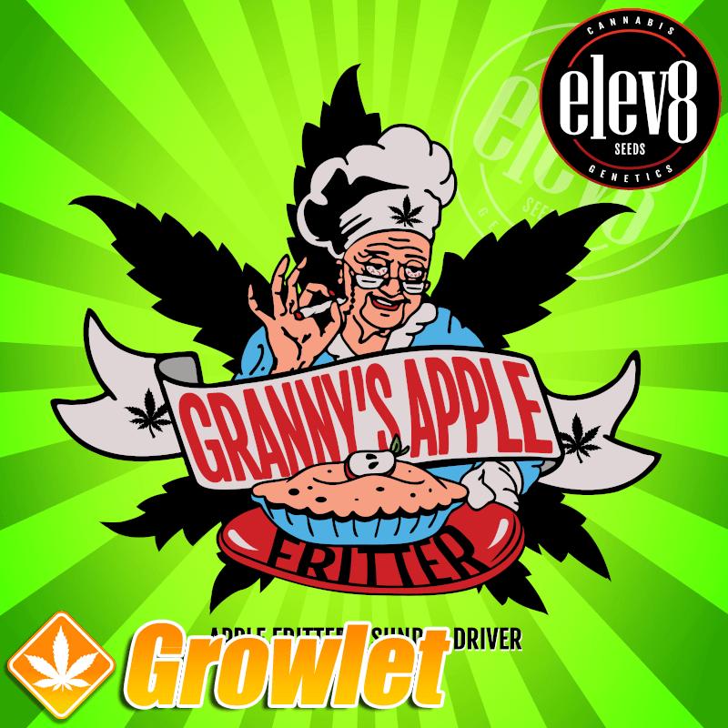 Granny´s Apple Fritter semillas feminizadas de cannabis