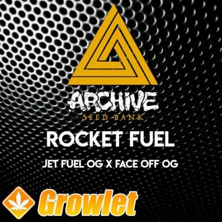 Rocket Fuel semillas regulares de cannabis