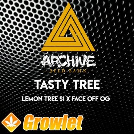 Tasty Trees semillas regulares de cannabis