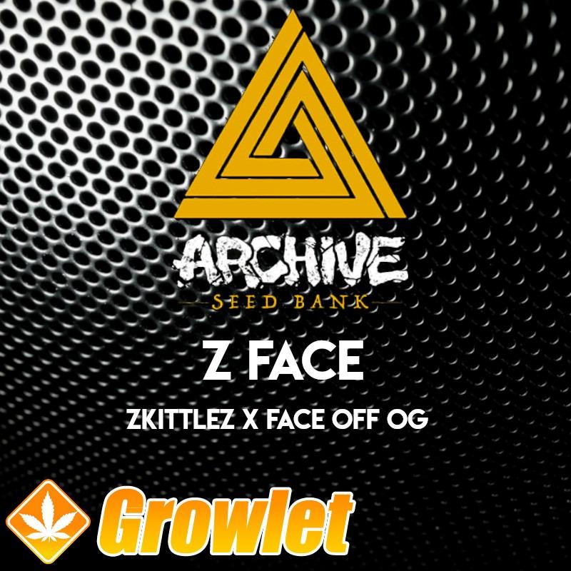Z-Face semillas regulares de cannabis